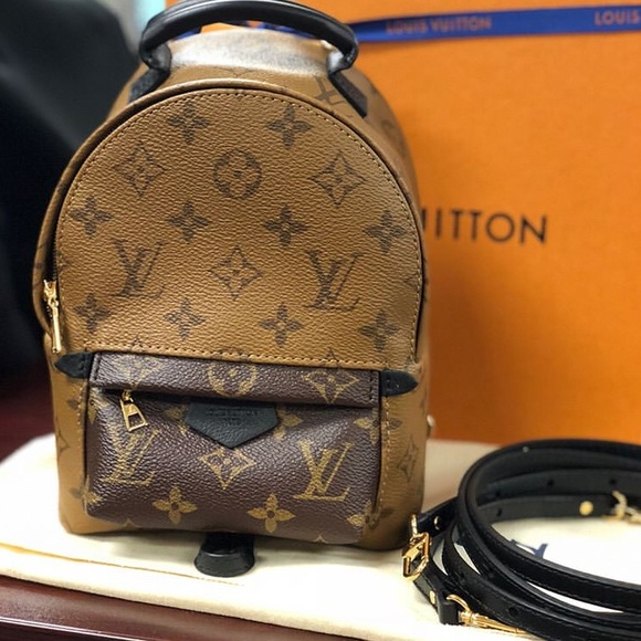 3ee41338c2d6e Louis Vuitton Bags | Palm Springs Backpack Mini Reverse Monogram ...